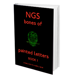 the-bones-of-painted-letters-ngs-book-1-copia